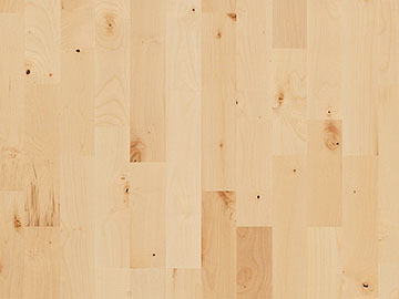 European maple wood flooring